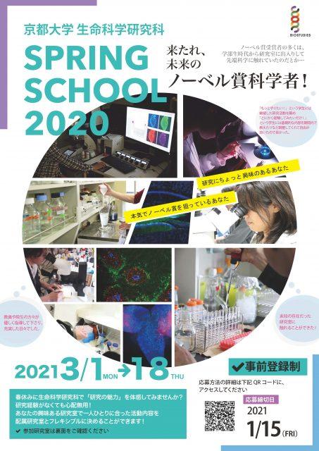 Sping School 2020 チラシ(表面)