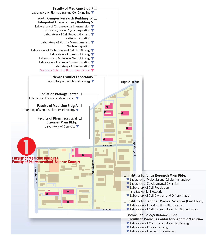 map2_e